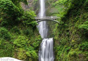 120 Splendide Frasi sulla Bellezza della Natura
