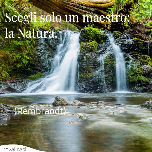 Scegli solo un maestro: la Natura