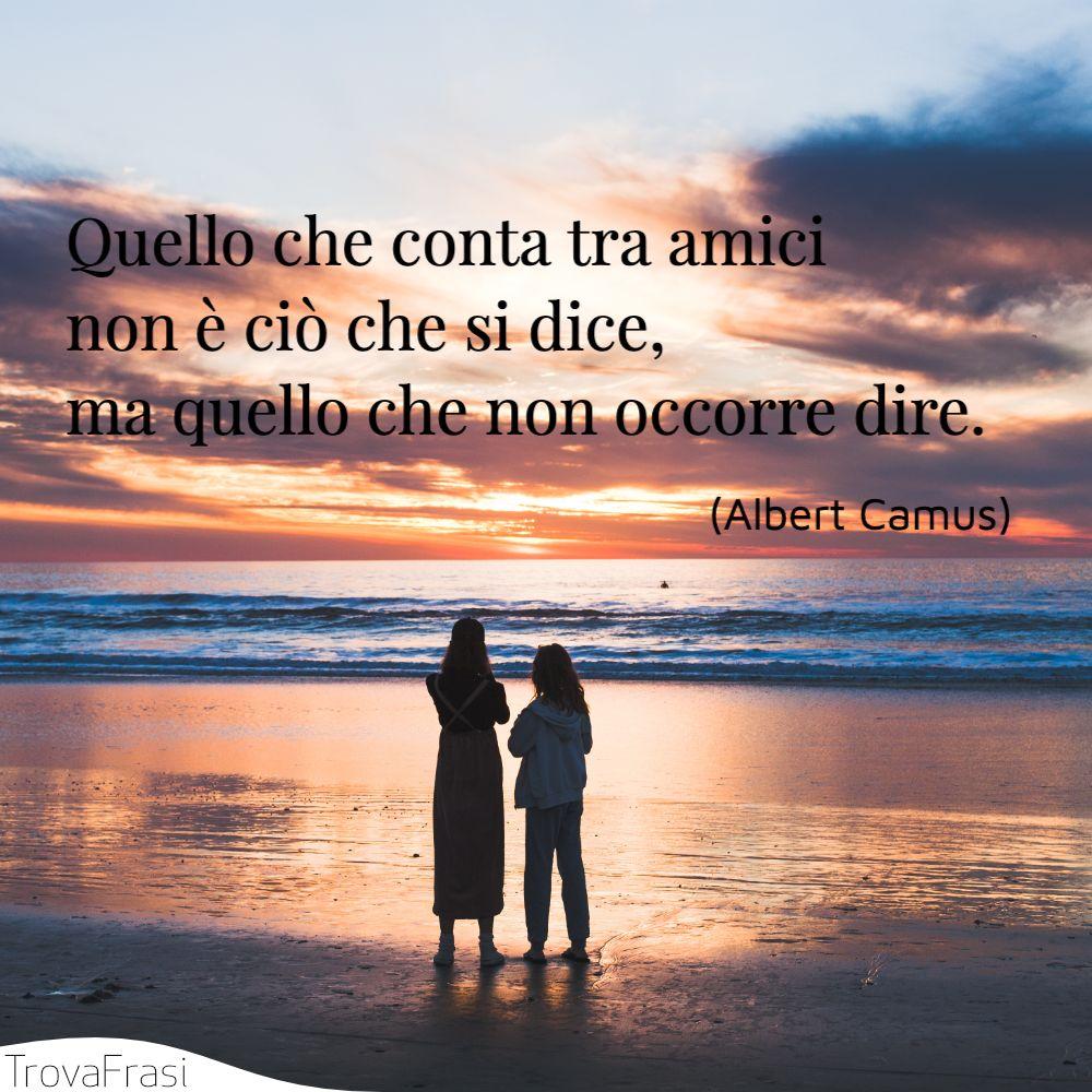 Quello che conta tra amici non è ciò che si dice, ma quello che non occorre dire.