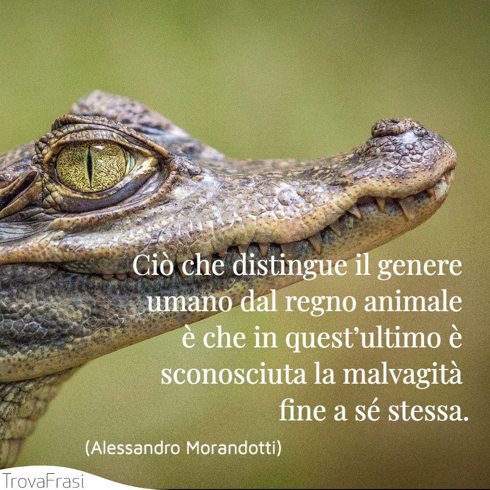 Ciò che distingue il genere umano dal regno animale è che in quest'ultimo è sconosciuta la malvagità fine a sé stessa.