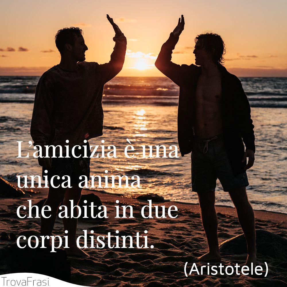 L'amicizia è una unica anima che abita in due corpi distinti.