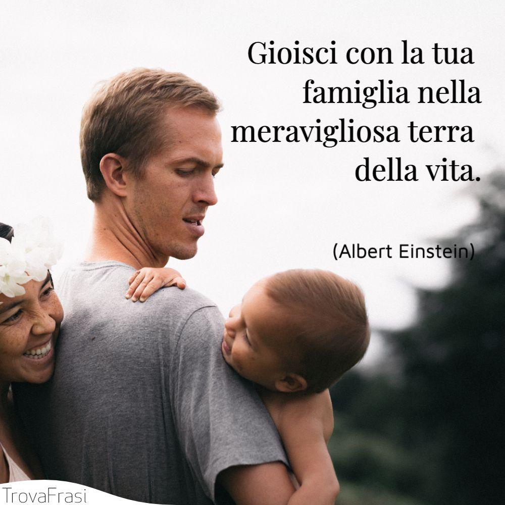 Gioisci con la tua famiglia nella meravigliosa terra della vita.