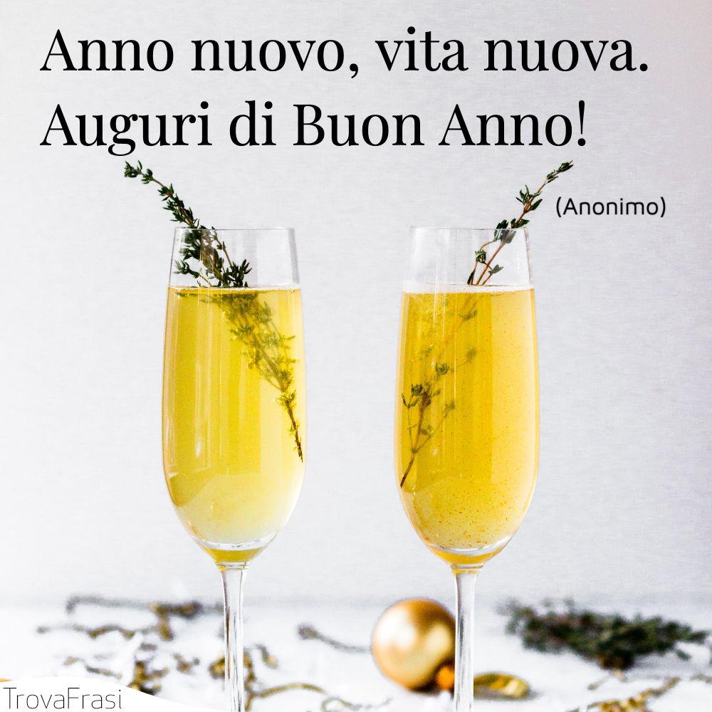 Anno nuovo, vita nuova. Auguri di Buon Anno!