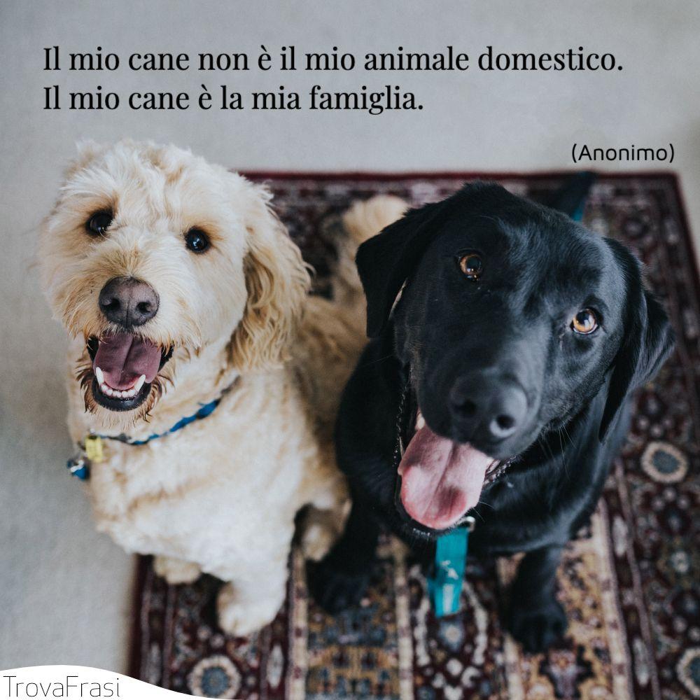 Il mio cane non è il mio animale domestico. Il mio cane è la mia famiglia.