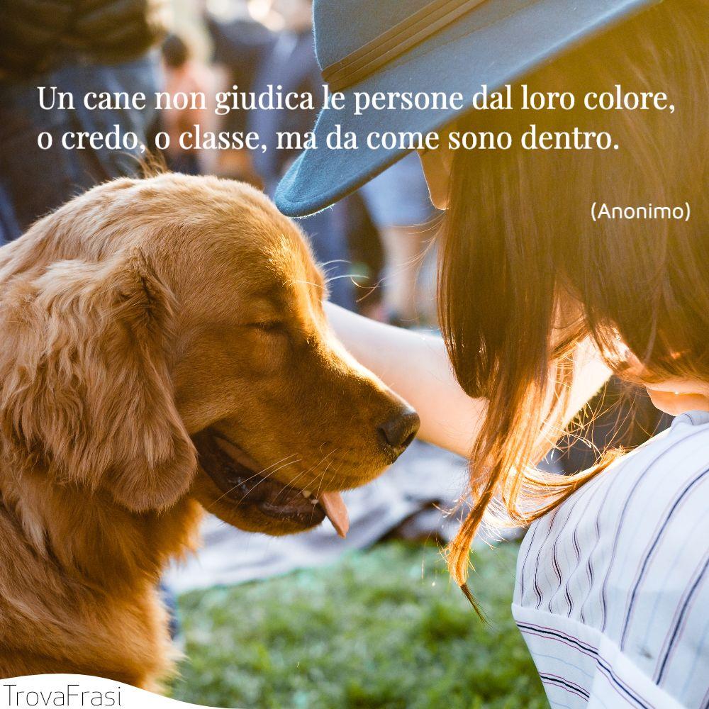 Un cane non giudica le persone dal loro colore, o credo, o classe, ma da come sono dentro.