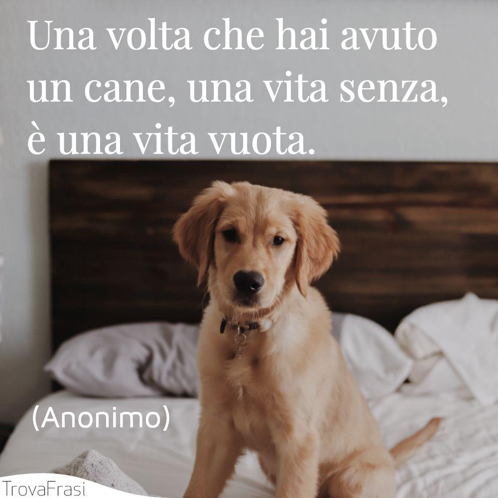 Una volta che hai avuto un cane, una vita senza, è una vita vuota.