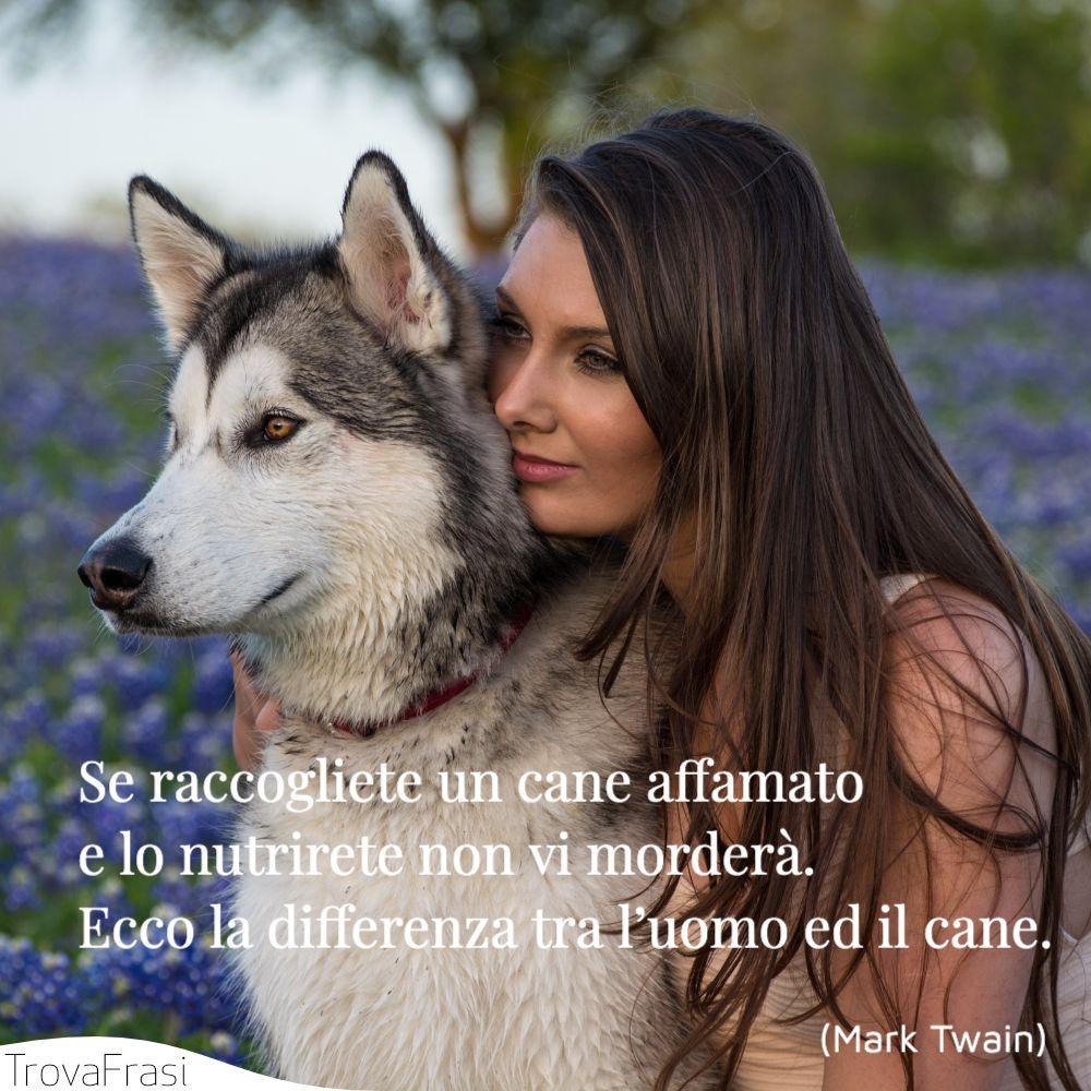 Se raccogliete un cane affamato e lo nutrirete non vi morderà. Ecco la differenza tra l'uomo ed il cane.