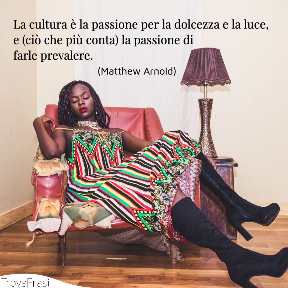 La cultura è la passione per la dolcezza e la luce, e (ciò che più conta) la passione di farle prevalere.