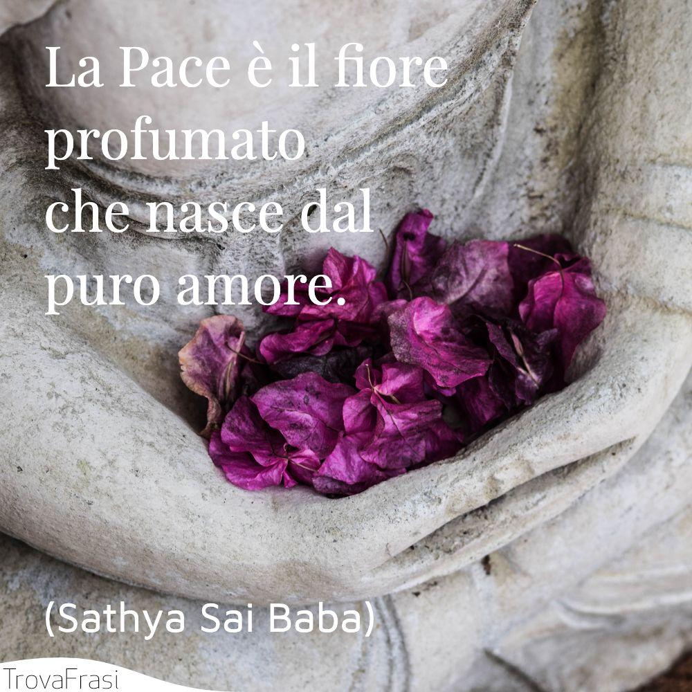 La Pace è il fiore profumato che nasce dal puro amore.