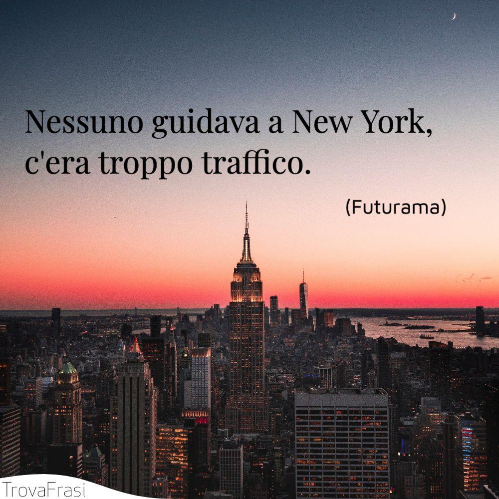 Nessuno guidava a New York, c'era troppo traffico.