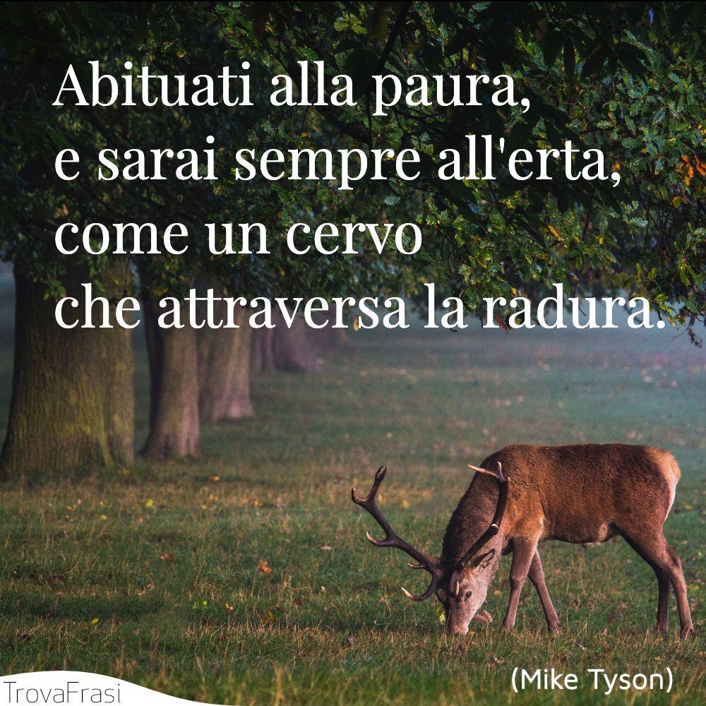 Abituati alla paura, e sarai sempre all'erta, come un cervo che attraversa la radura.