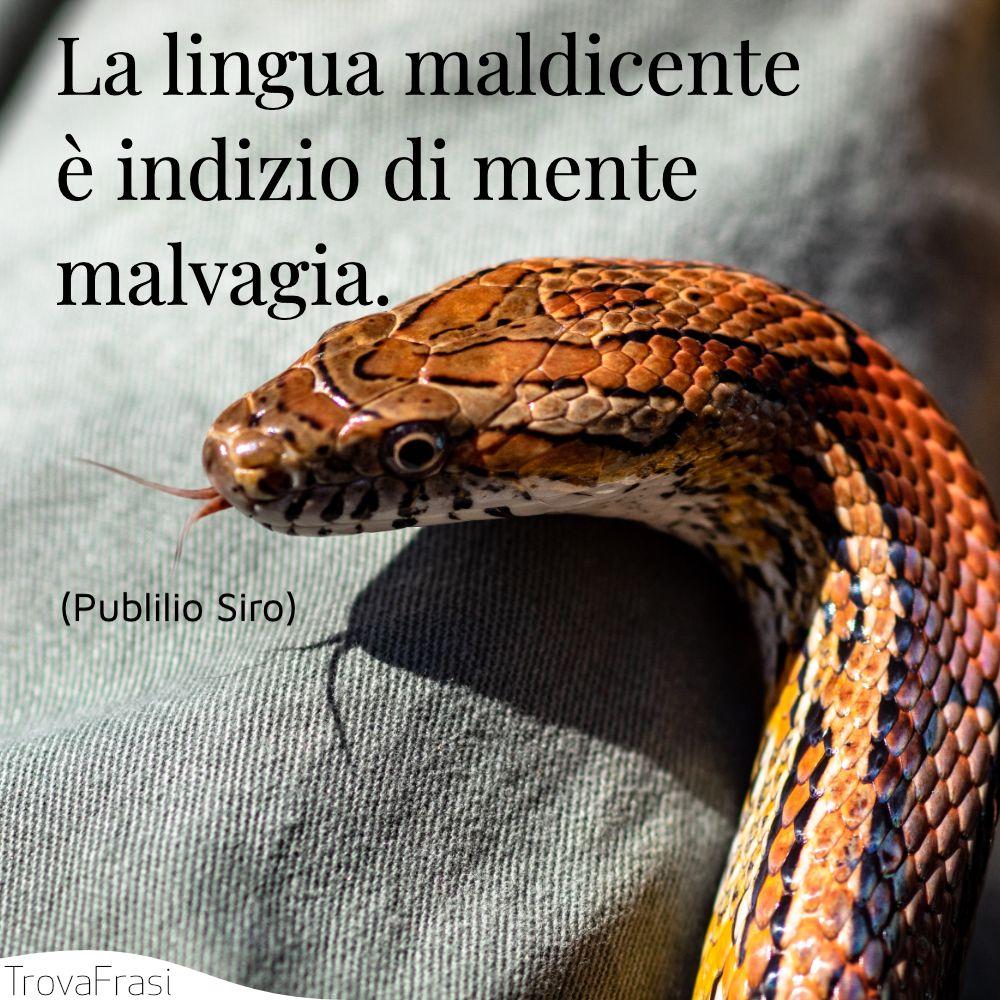 La lingua maldicente è indizio di mente malvagia.