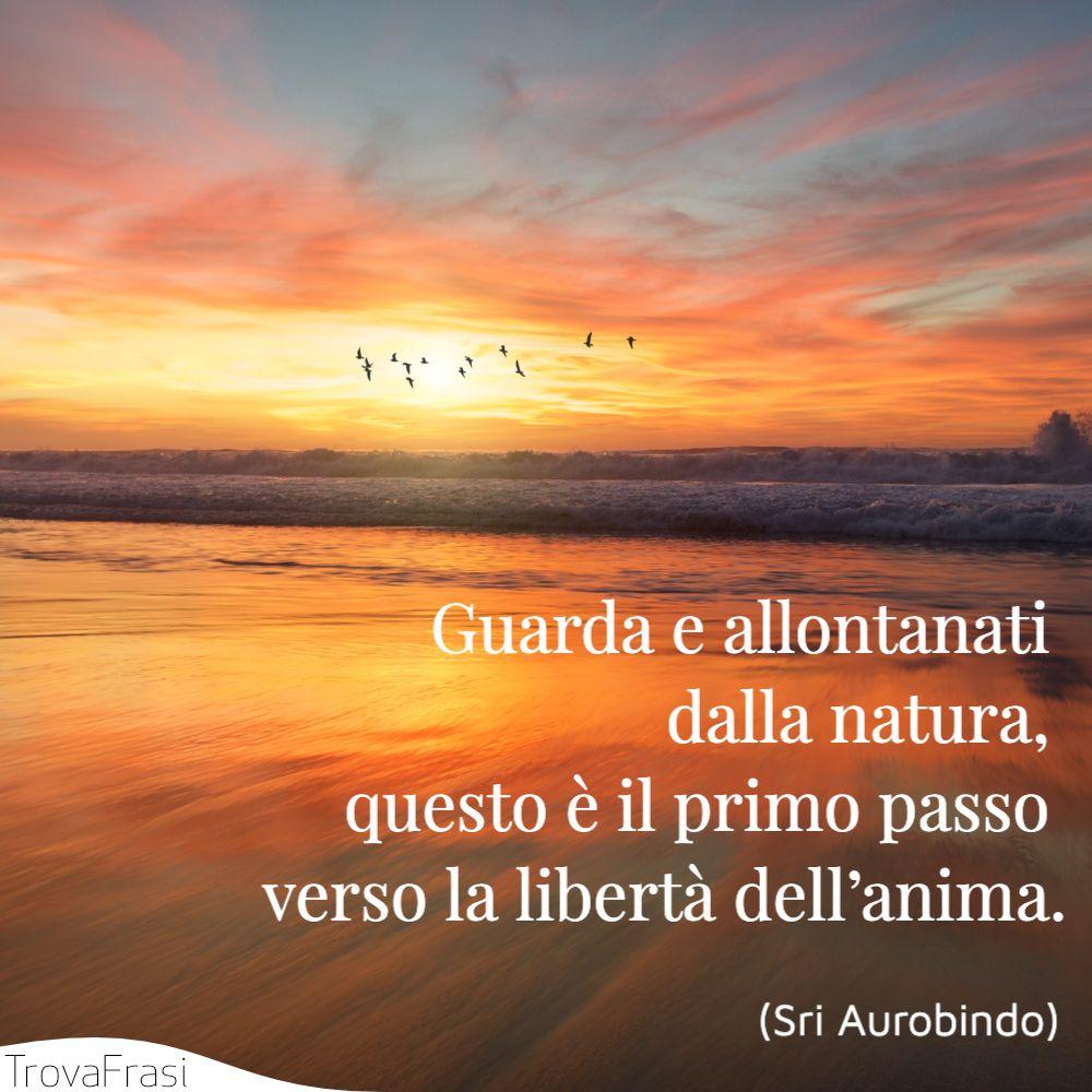 Guarda e allontanati dalla natura, questo è il primo passo verso la libertà dell'anima.