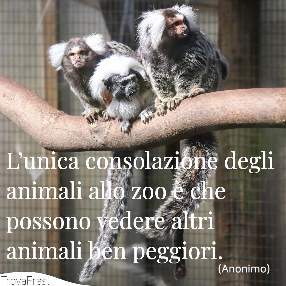 L'unica consolazione degli animali allo zoo è che possono vedere altri animali ben peggiori.