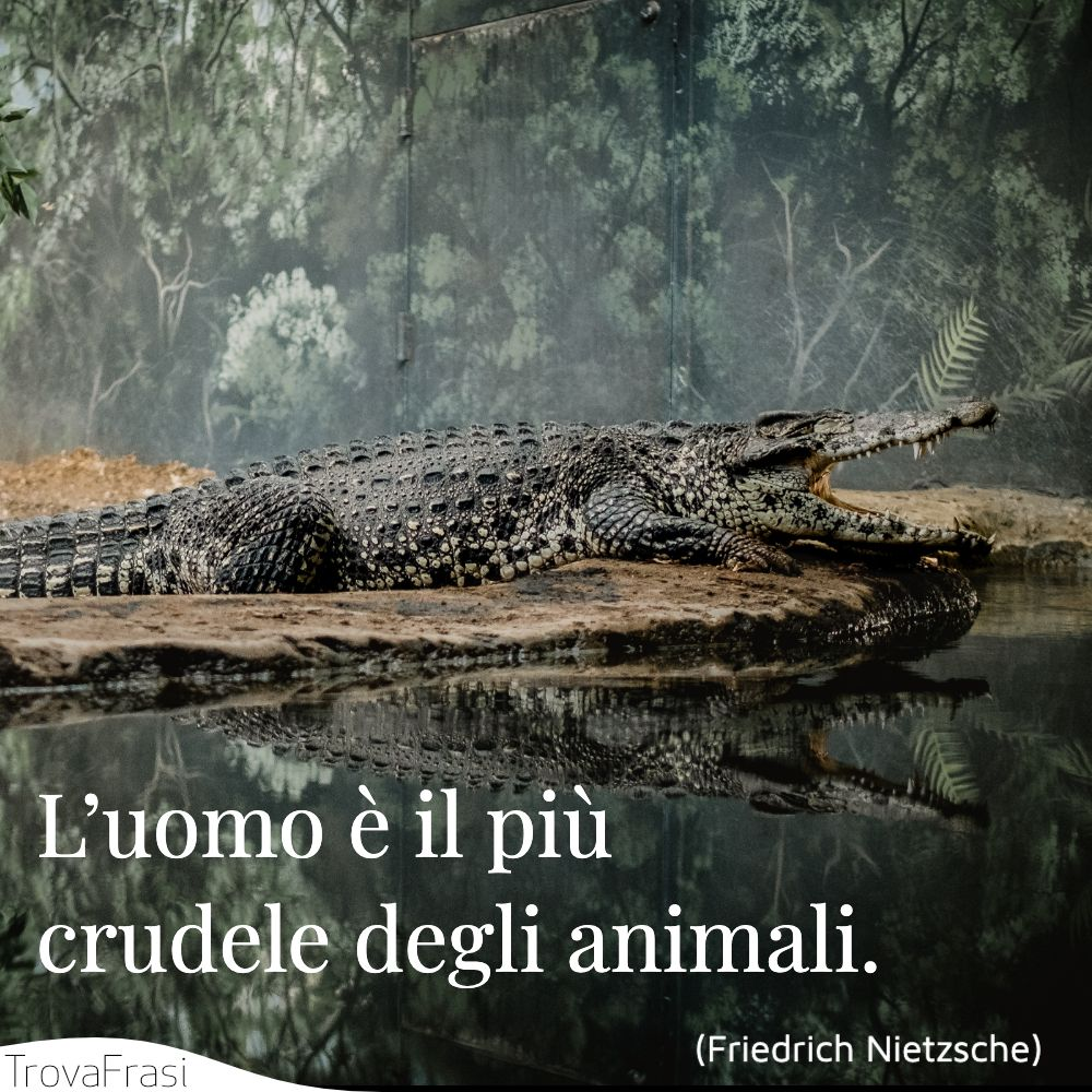 L'uomo è il più crudele degli animali.