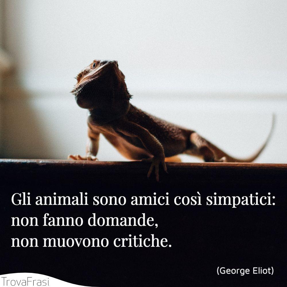 Gli animali sono amici così simpatici: non fanno domande, non muovono critiche.