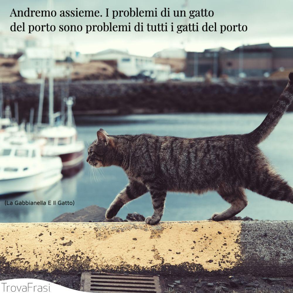 Andremo assieme. I problemi di un gatto del porto sono problemi di tutti i gatti del porto