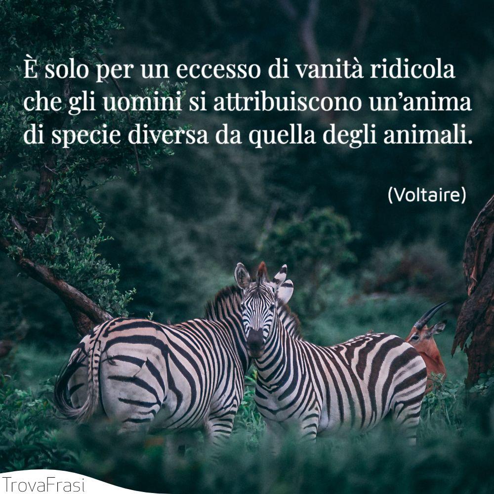 È solo per un eccesso di vanità ridicola che gli uomini si attribuiscono un'anima di specie diversa da quella degli animali.