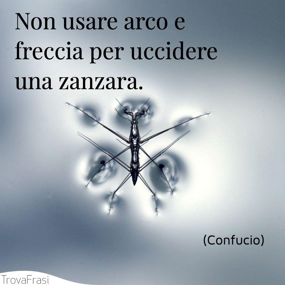 Non usare arco e freccia per uccidere una zanzara.