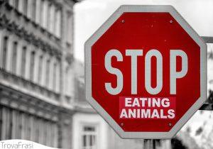 frasi sul vegetarianismo