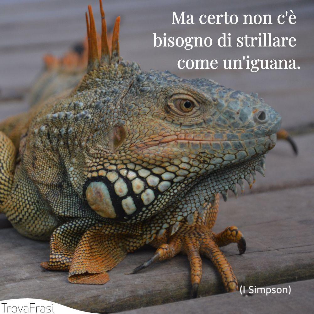 Ma certo non c'è bisogno di strillare come un'iguana.