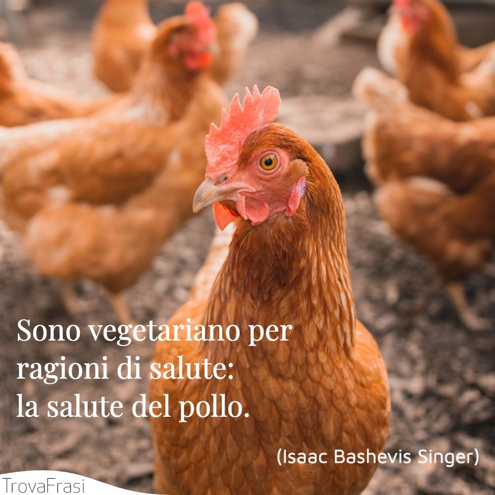 Sono vegetariano per ragioni di salute: la salute del pollo.