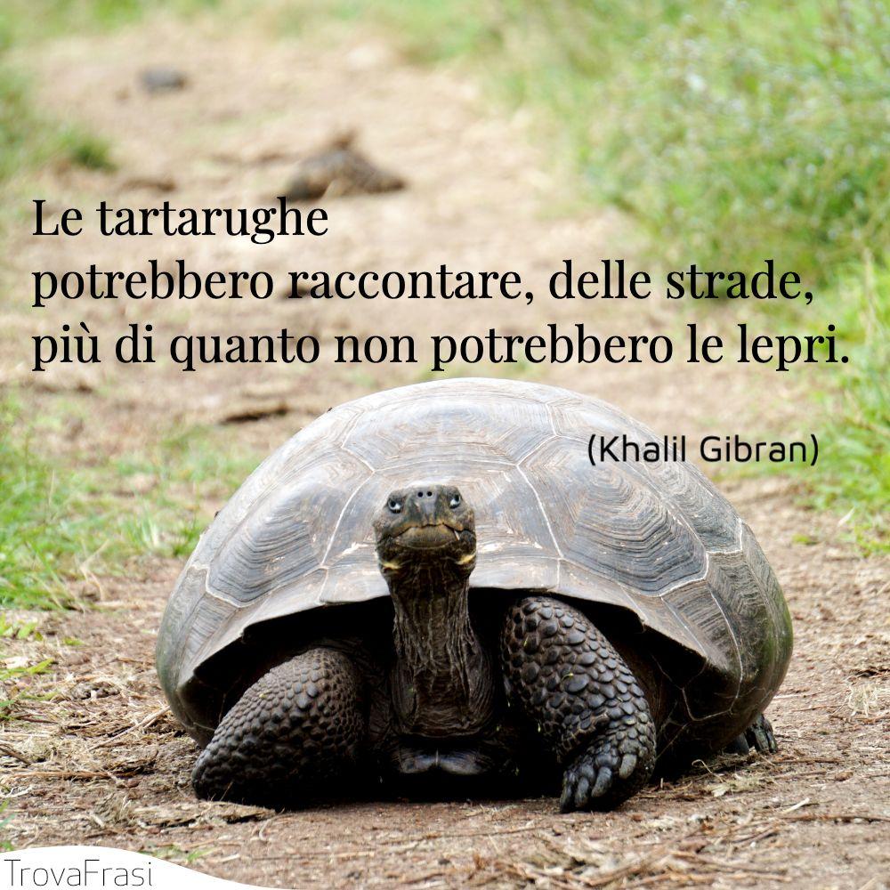 Le tartarughe potrebbero raccontare, delle strade, più di quanto non potrebbero le lepri.