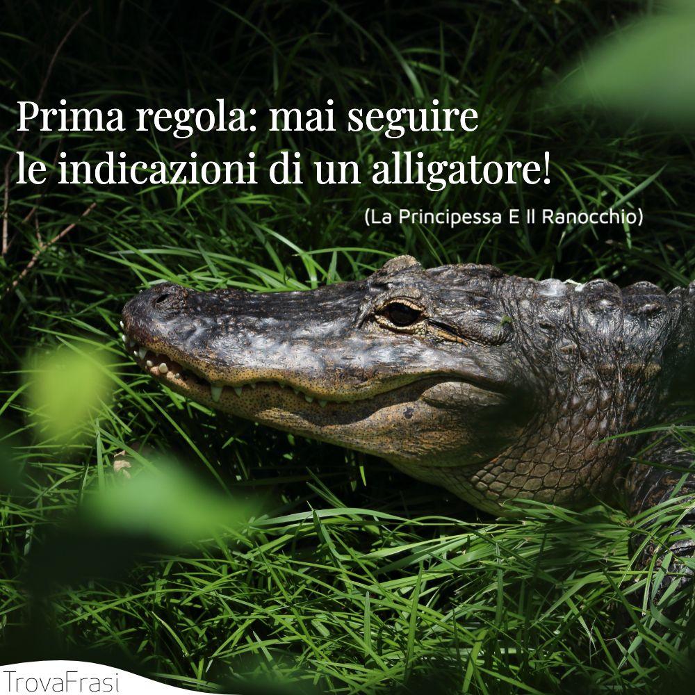 Prima regola: mai seguire le indicazioni di un alligatore!