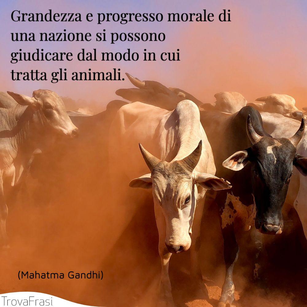 Grandezza e progresso morale di una nazione si possono giudicare dal modo in cui tratta gli animali.