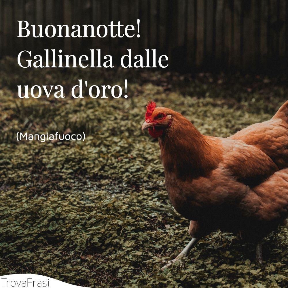 Buonanotte! Gallinella dalle uova d'oro!