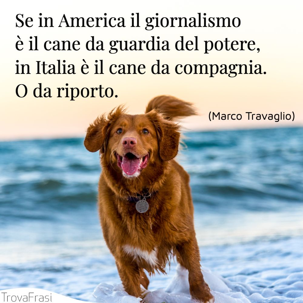 Se in America il giornalismo è il cane da guardia del potere, in Italia è il cane da compagnia. O da riporto.