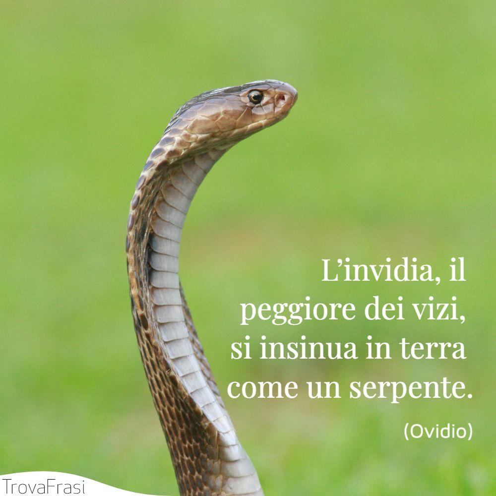 L'invidia, il peggiore dei vizi, si insinua in terra come un serpente.