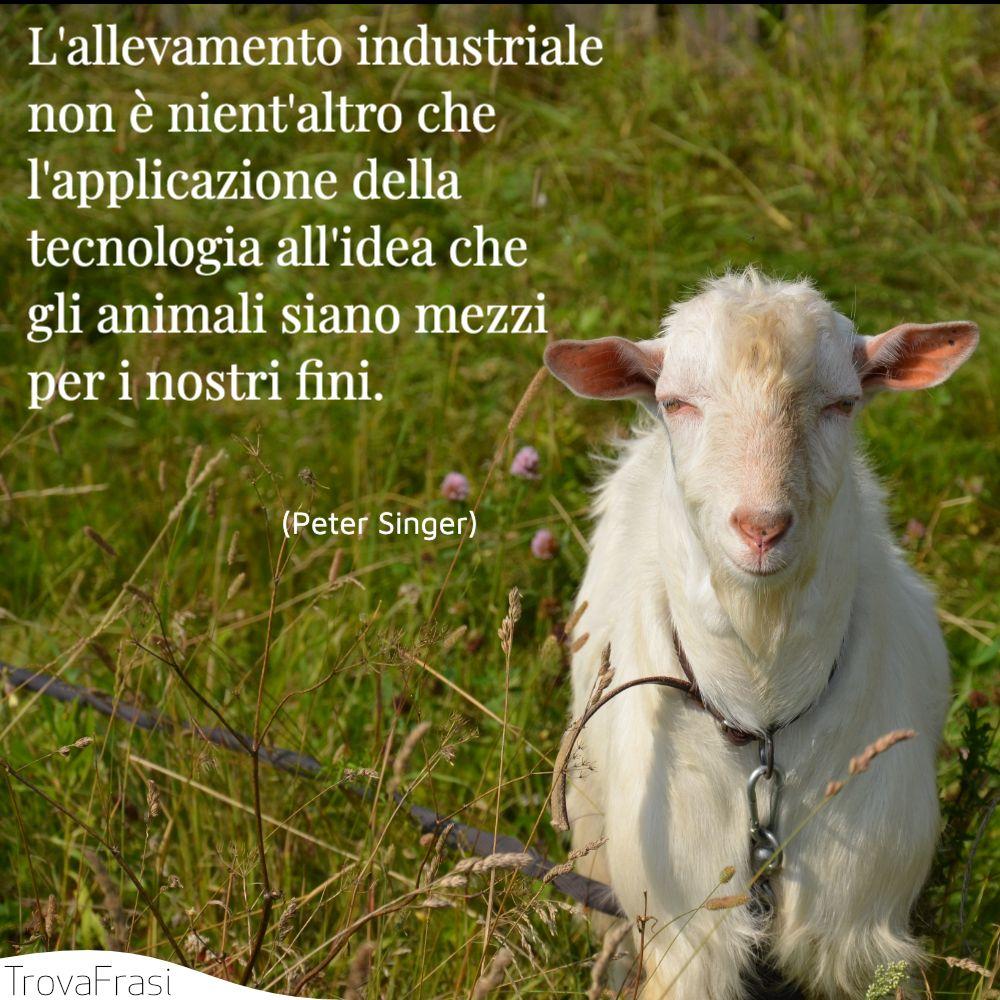 L'allevamento industriale non è nient'altro che l'applicazione della tecnologia all'idea che gli animali siano mezzi per i nostri fini.