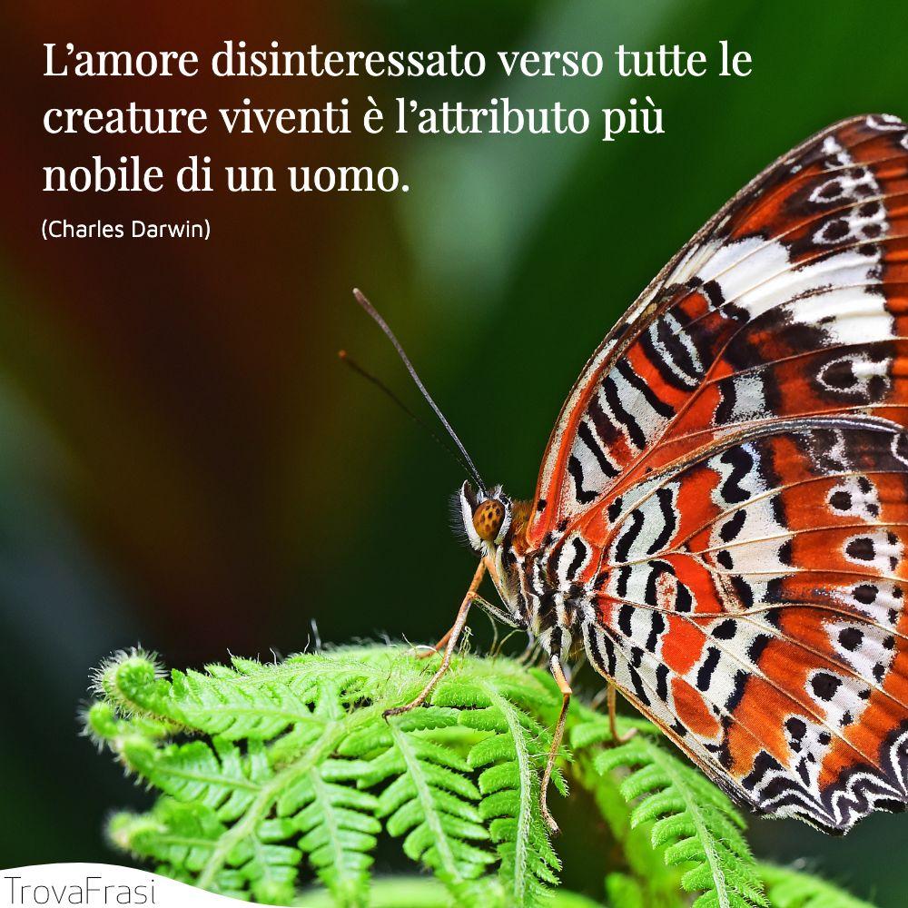 L'amore disinteressato verso tutte le creature viventi è l'attributo più nobile di un uomo.