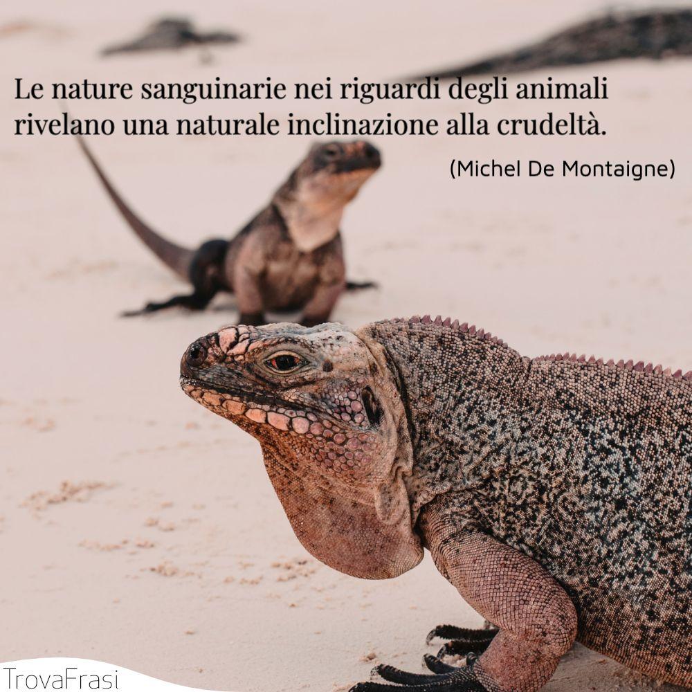 Le nature sanguinarie nei riguardi degli animali rivelano una naturale inclinazione alla crudeltà.