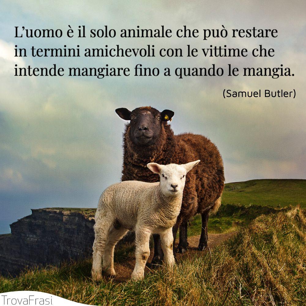L'uomo è il solo animale che può restare in termini amichevoli con le vittime che intende mangiare fino a quando le mangia.