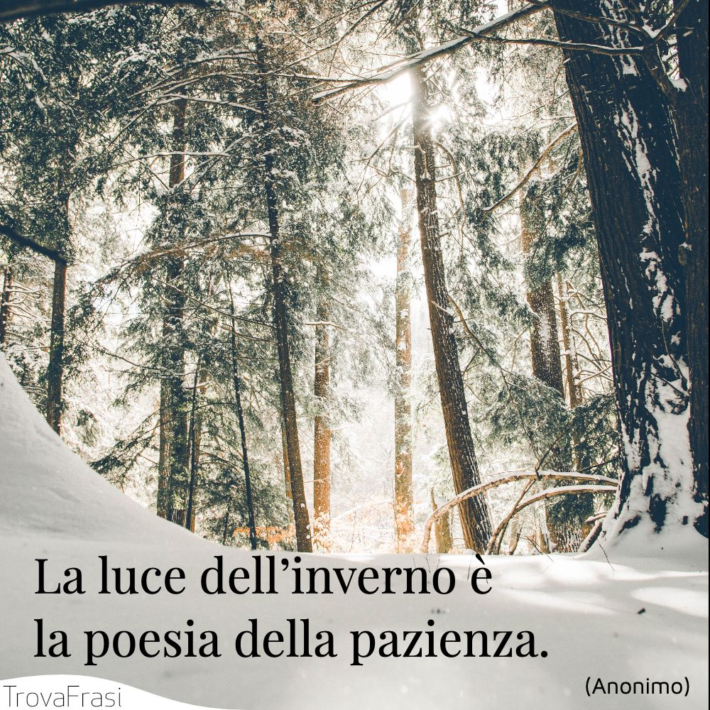 La luce dell'inverno è la poesia della pazienza.