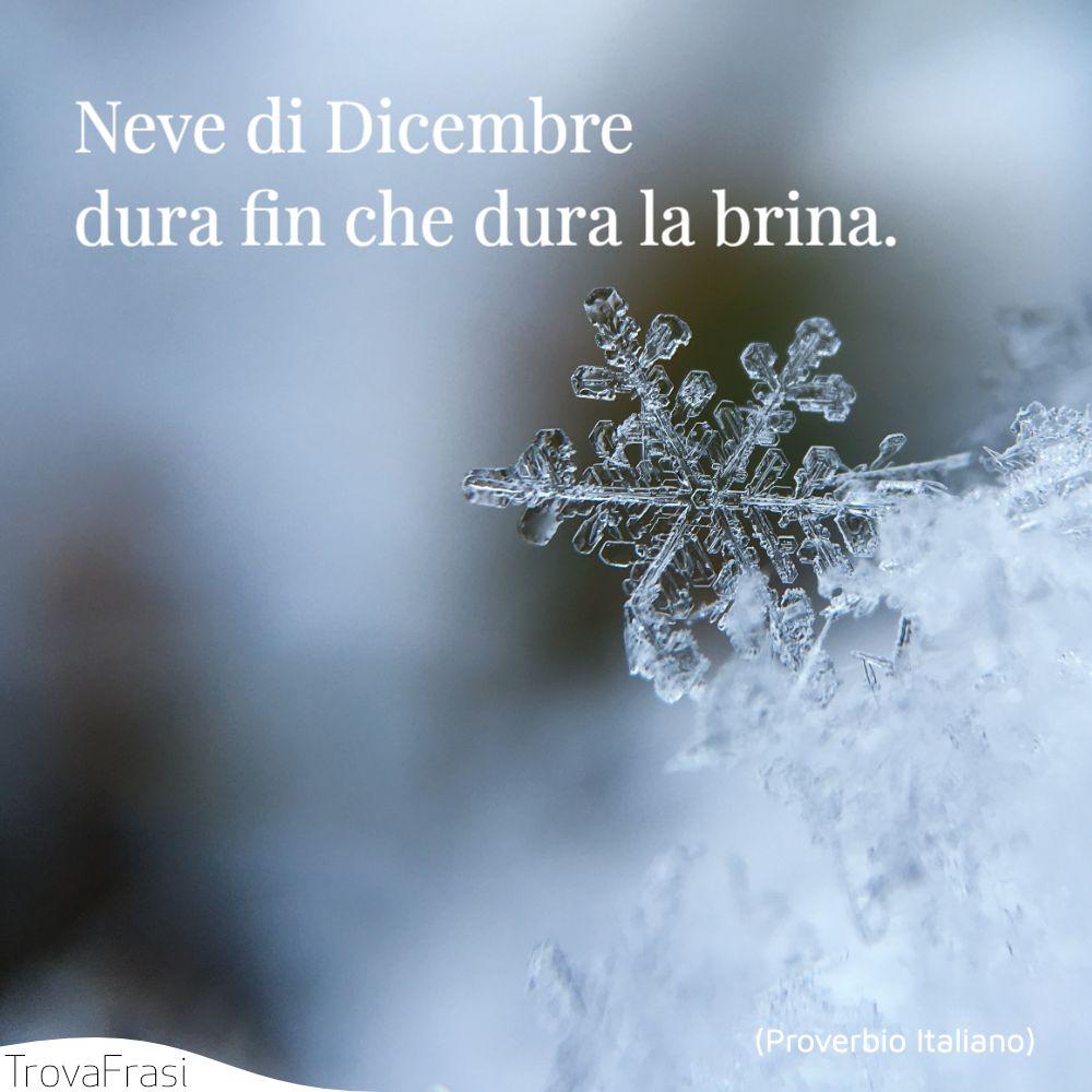 Neve di Dicembre dura fin che dura la brina.