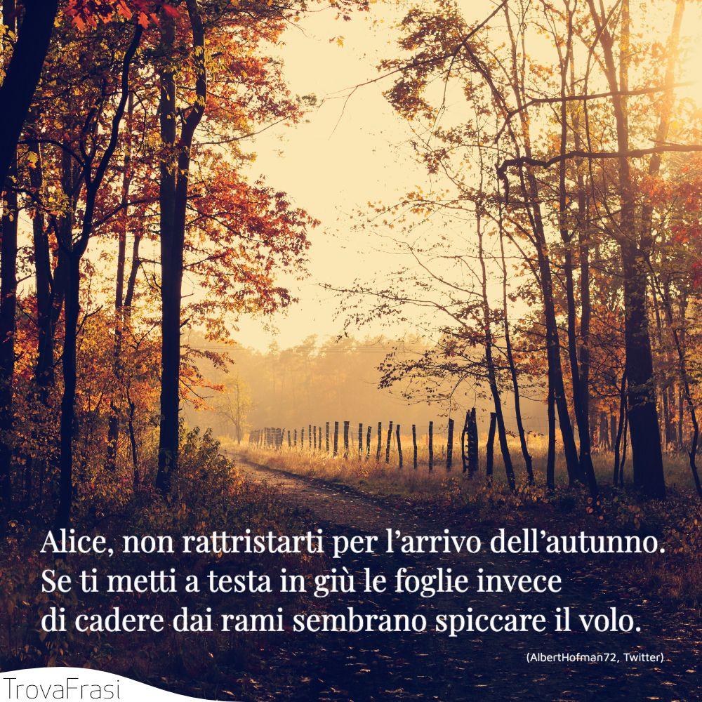 Alice, non rattristarti per l'arrivo dell'autunno.Se ti metti a testa in giù le foglie invece di cadere dai rami sembrano spiccare il volo.