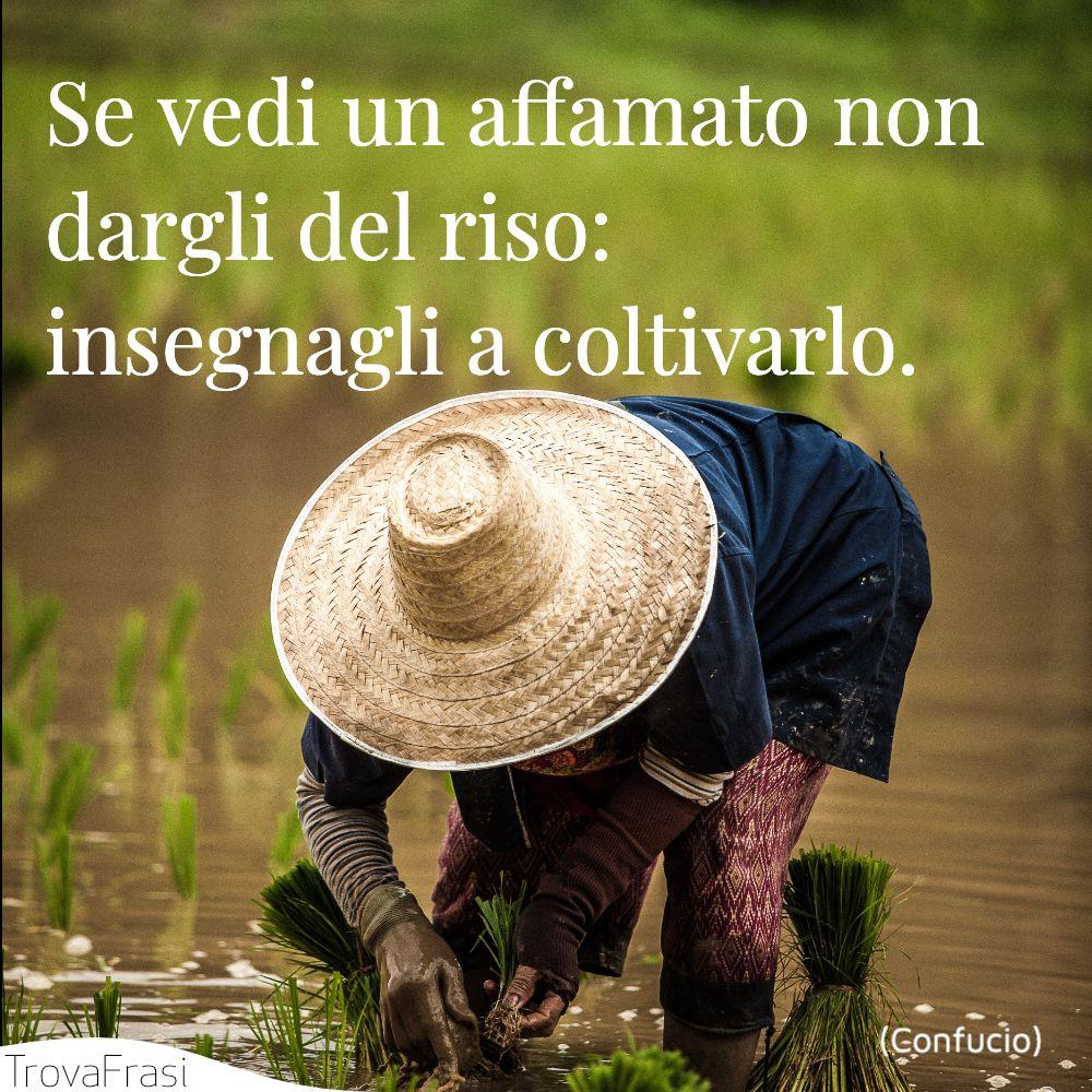 Se vedi un affamato non dargli del riso: insegnagli a coltivarlo.