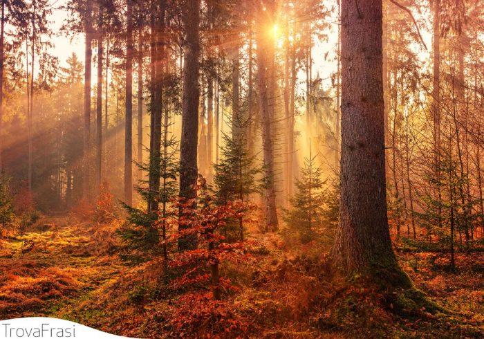 frasi sull'autunno
