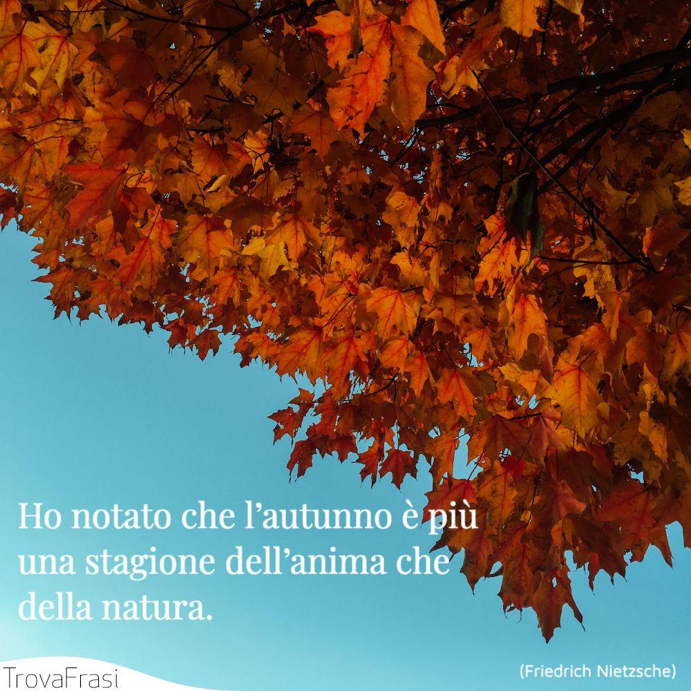 Ho notato che l'autunno è più una stagione dell'anima che della natura.