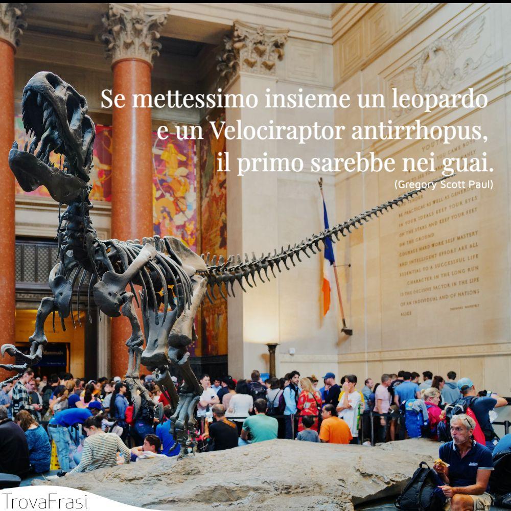 Se mettessimo insieme un leopardo e un Velociraptor antirrhopus, il primo sarebbe nei guai.