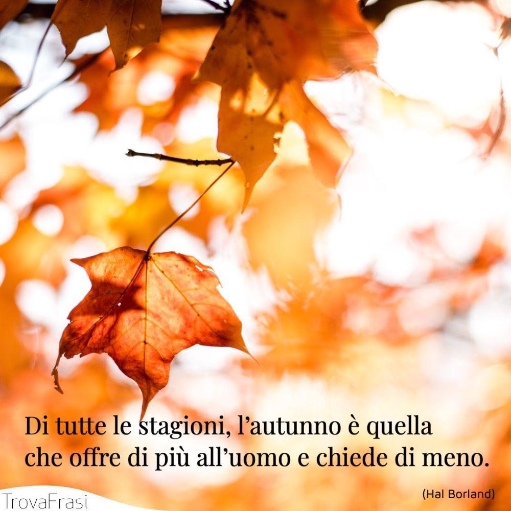 Di tutte le stagioni, l'autunno è quella che offre di più all'uomo e chiede di meno.