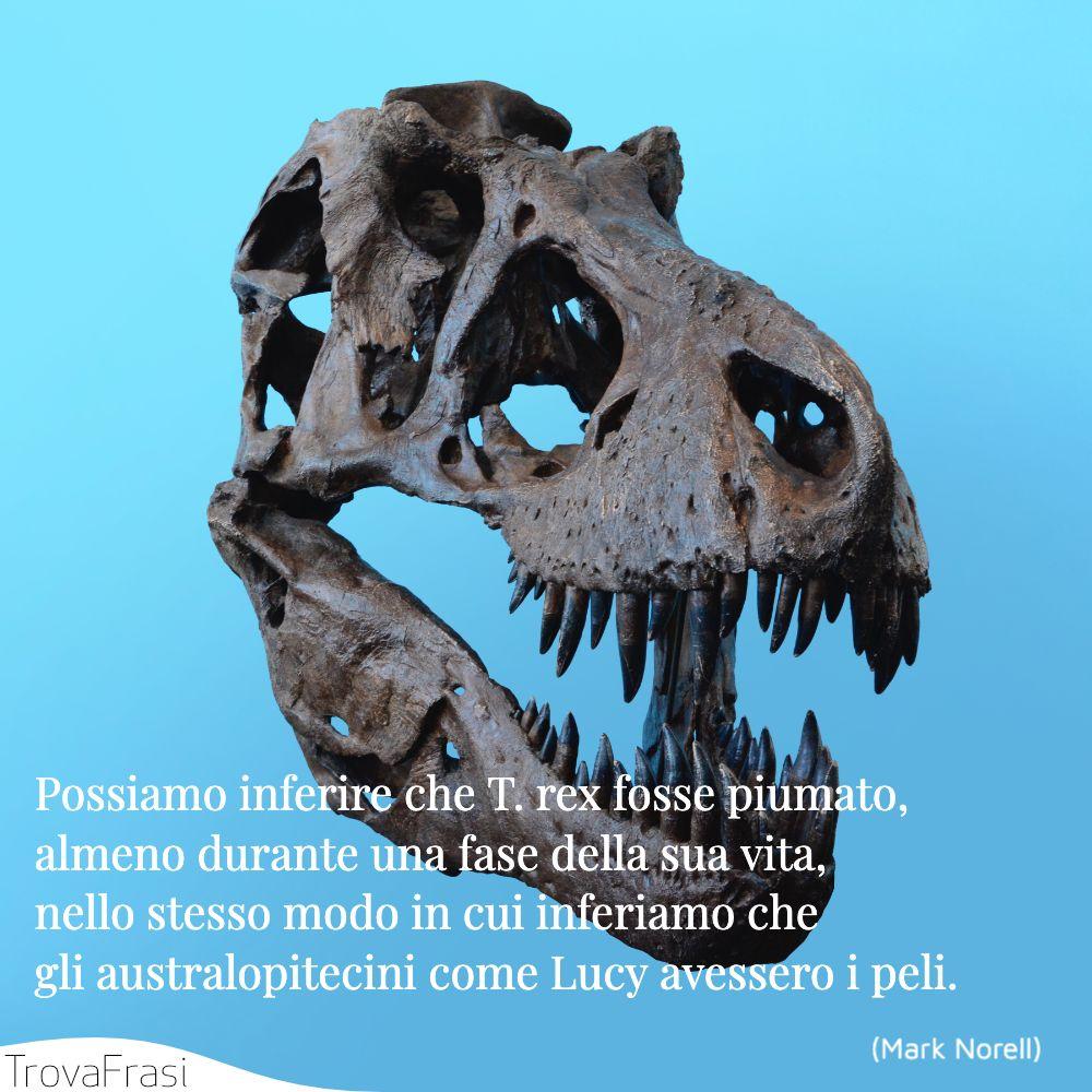Possiamo inferire che T. rex fosse piumato, almeno durante una fase della sua vita, nello stesso modo in cui inferiamo che gli australopitecini come Lucy avessero i peli.