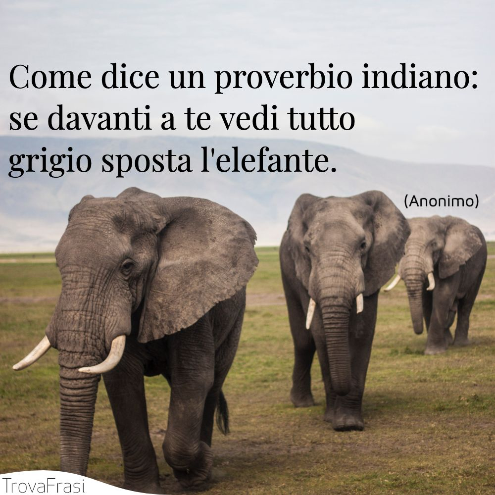 Come dice un proverbio indiano: se davanti a te vedi tutto grigio sposta l'elefante.
