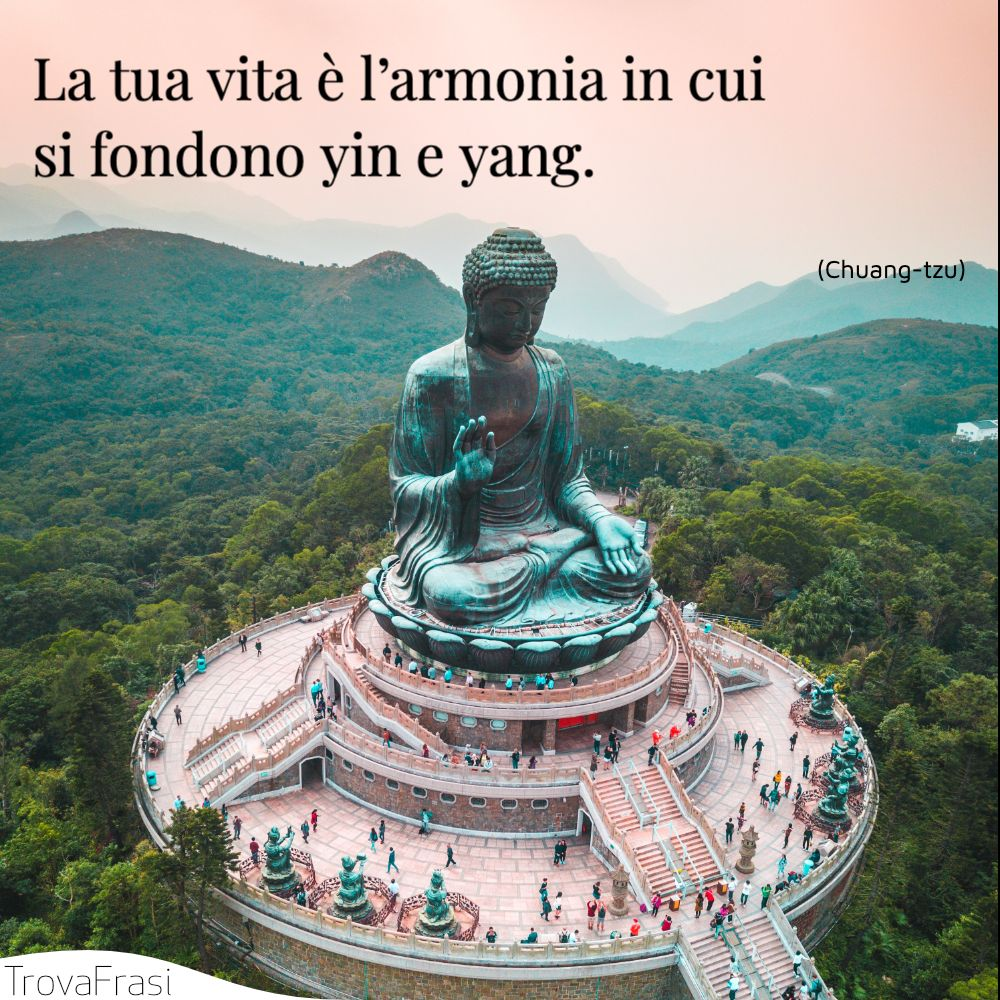 La tua vita è l'armonia in cui si fondono yin e yang.
