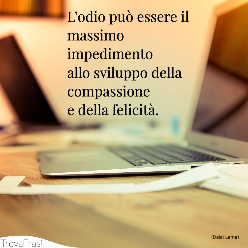 L'odio può essere il massimo impedimento allo sviluppo della compassione e della felicità.