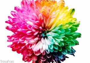 frasi sui colori (arte/design)