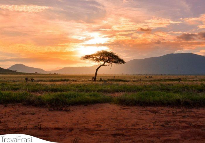 frasi sull'africa
